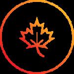 Fall leaf icon