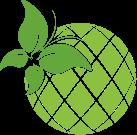 green fruit icon